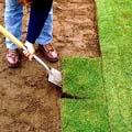 верхний слой почвы 4 буквы - фото 6