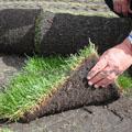 верхний слой почвы 4 буквы img-1