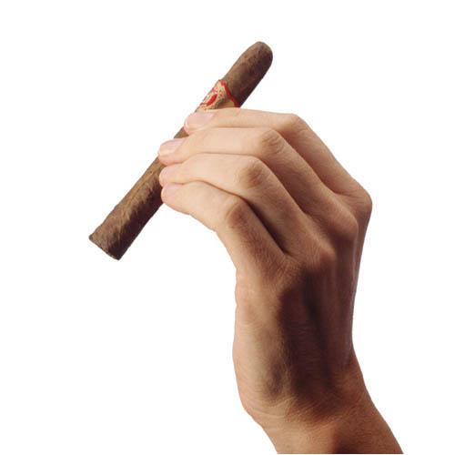 Табачное изделие сканворд 8 букв сканворд сигареты купить в интернет магазине в ярославле